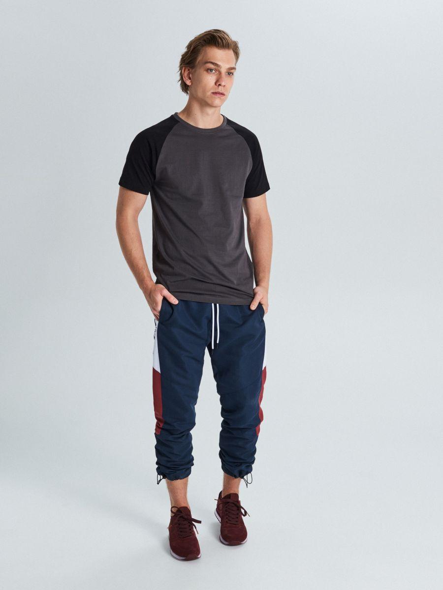Marškinėliai reglano rankovėmis - PILKA - WS394-90X - Cropp - 3